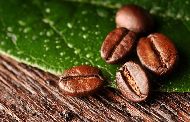 roeskant-kaffeeroesterei_c-oelsner__Seite_03